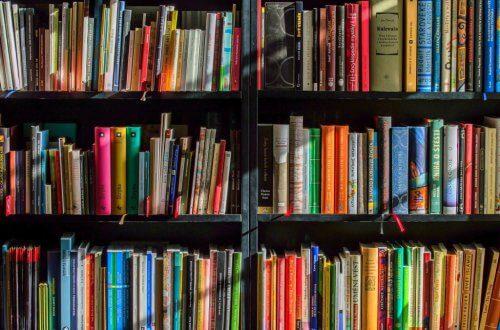 books regał